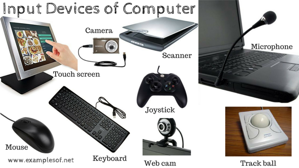 examples of Input Devices of Computer
